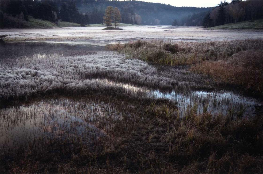 朝霜の尾瀬